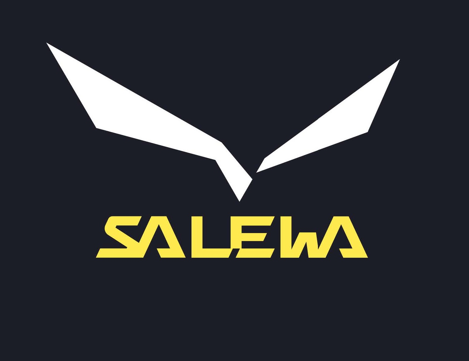 salewa new logo